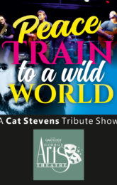 Peace Train to a Wild World - Cat Stevens Tribute